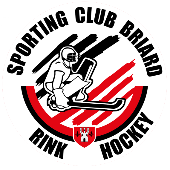 Image Rink Hockey Sporting Club Briard Roller Sports